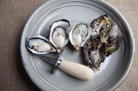 bangor-wine-oyster-shed